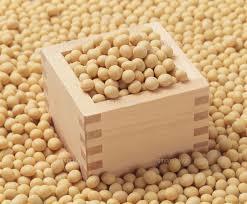 大豆ダイエット方法は痩せるのか?効果抜群?イソフラボン効果と摂取量目安は?